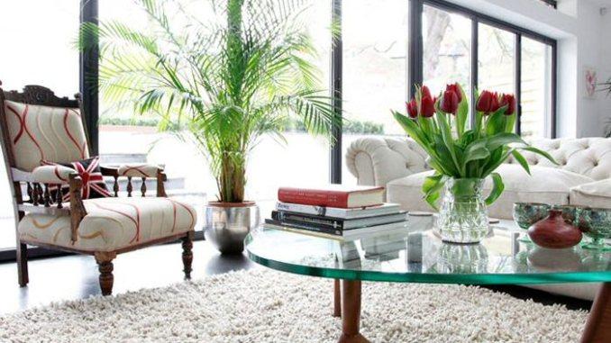 flowers, living room, decor, windows