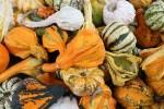 Marmellata di Zucca (Pumpkin jam)