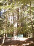 Aspromonte National Park