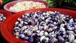 Italian Use of Beans - Fagioli
