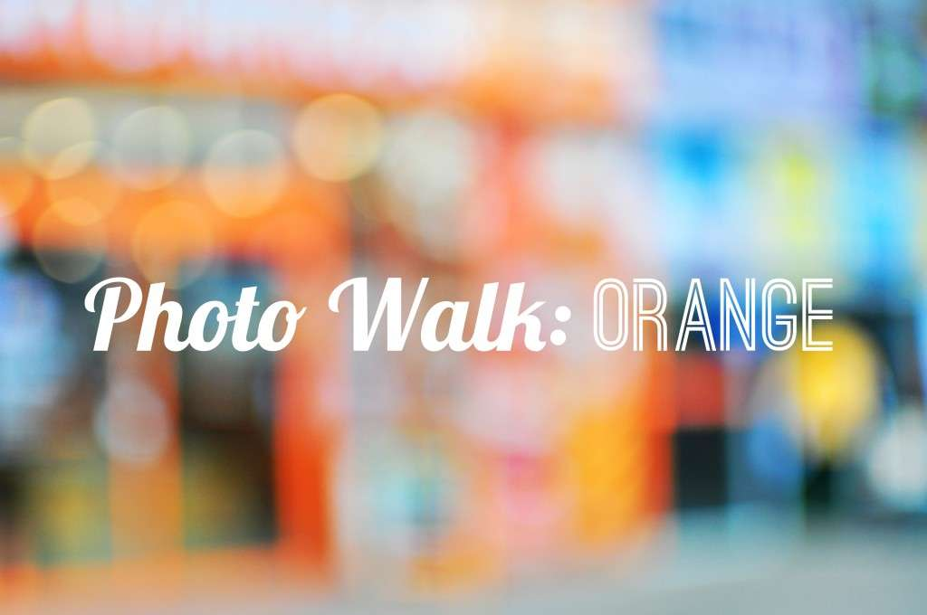 Photo Walk Orange