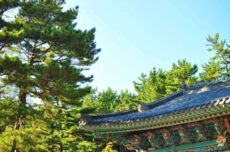 10 Things to Know When Visiting Korea