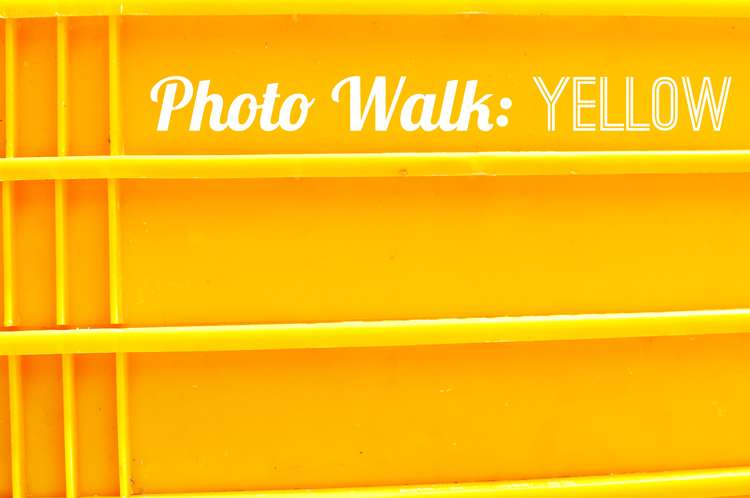 Photo Walk: Yellow >> Life In Limbo