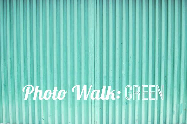 Photo Walk Green >> Life In Limbo