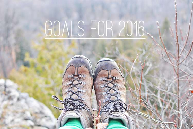 Goals for 2016 >> Life In Limbo