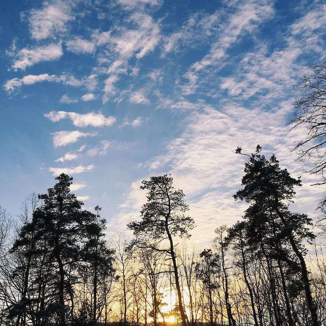 Inspiration: January 5 >> Life In Limbo