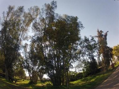 cadiz campsite with kia and rana 14