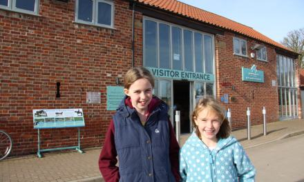 Ever Wondered Why We Roadschool? Here's a Great Example at Bransby Horses in Lincoln