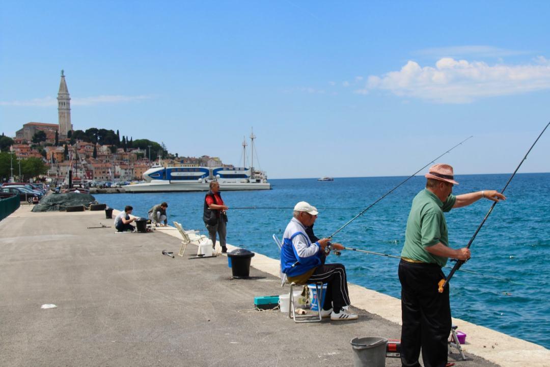 Leg 11 Croatia Lanterna Rovinj - 1 (1)-min