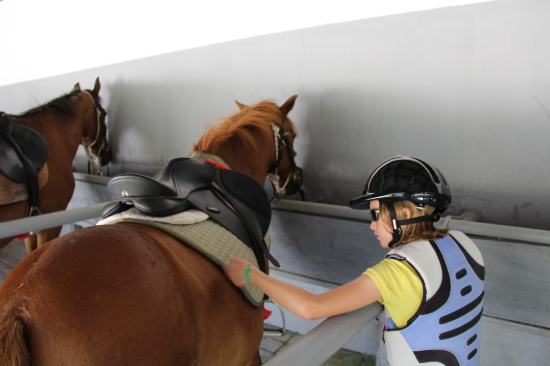 Leg 11 Croatia Zaton Horse Riding - 1 (1)-min