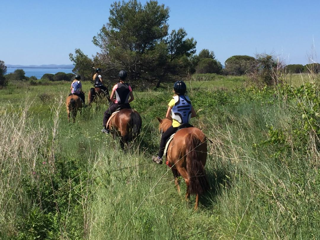 Leg 11 Croatia Zaton Horse Riding - 1 (39)-min