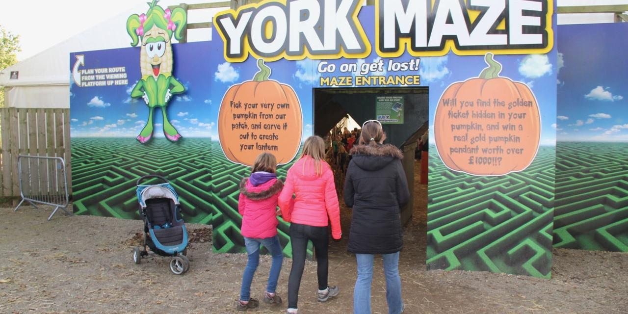 Enjoying a Spooky Halloween at York Maze