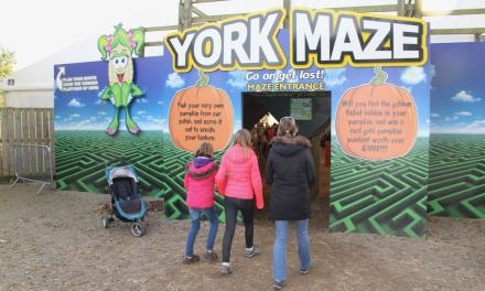 Enjoying a Spooky Halloween at York Maze