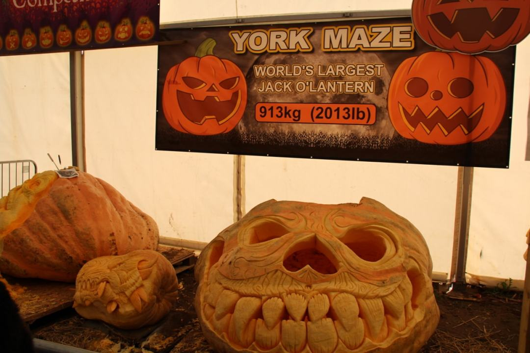 York Maze - 1 (92)-min