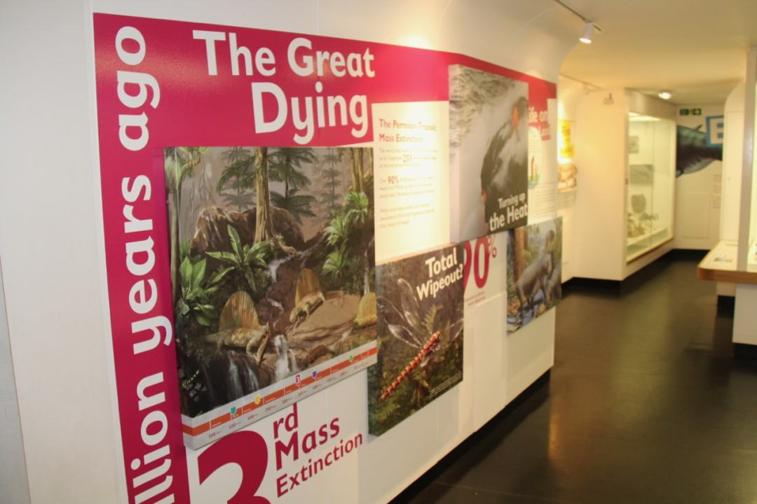York Museum - 1 (12)-min
