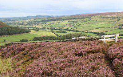 Lifeinourvan Europe Roadtrip | Drone Footage | England | North Yorkshire