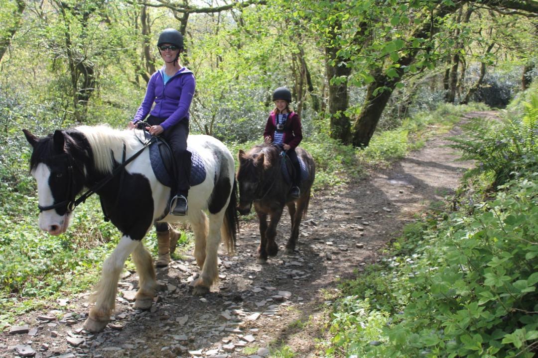 Horse Riding - 18-min