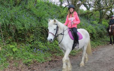 Horseback Adventures through Pembrokeshire's Bluebell Woods