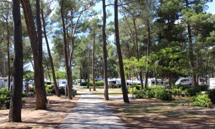 Campsite Review | Zaton Holiday Resort  | Zadar | Croatia