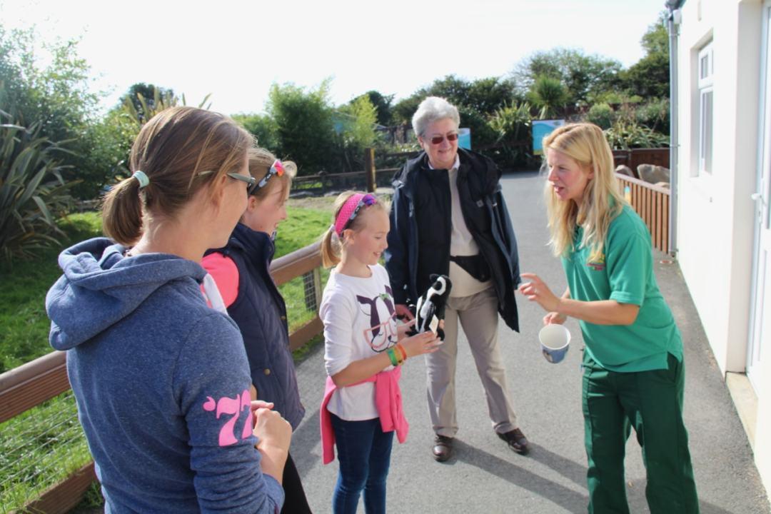 Pembrokeshire Day 2 - Folly Farm - 1 (103)-min
