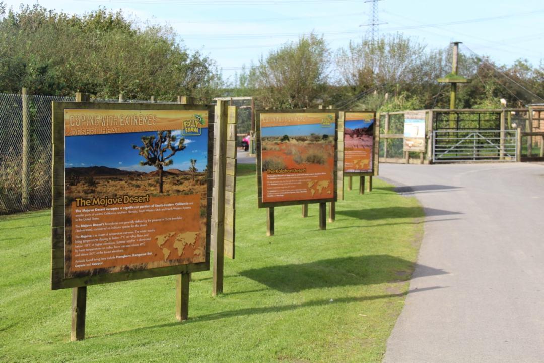 Pembrokeshire Day 2 - Folly Farm - 1 (106)-min