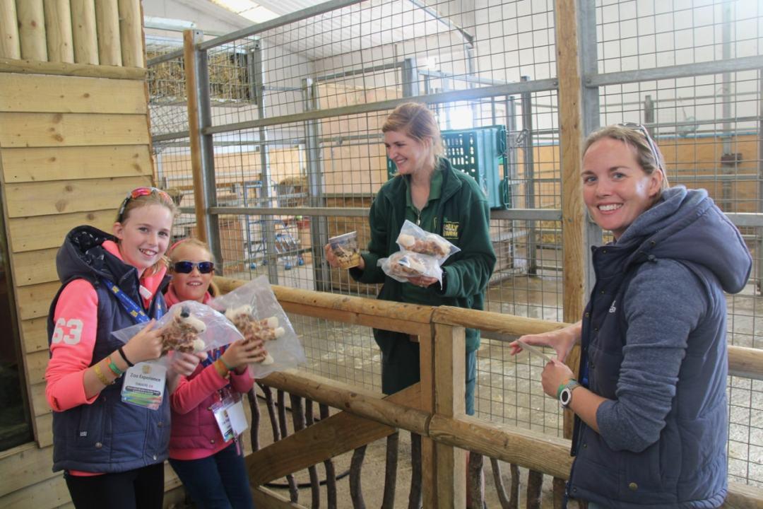 Pembrokeshire Day 2 - Folly Farm - 1 (44)-min