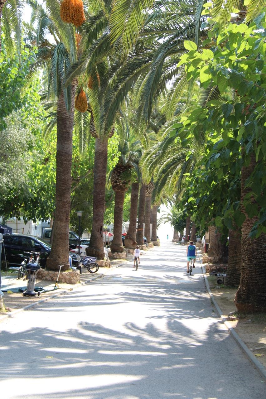 Spain Playa Montroig - 1 (33)-min