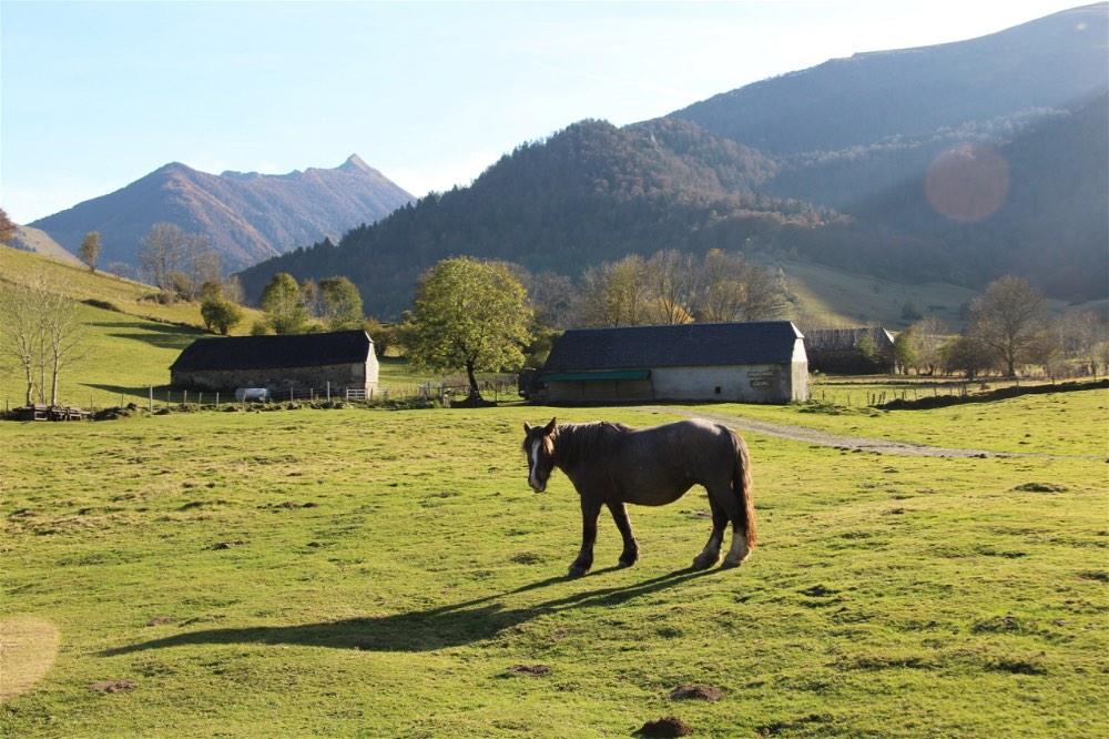 lifeinourvan - family adventure - pyrenees - 1 (18)-opt