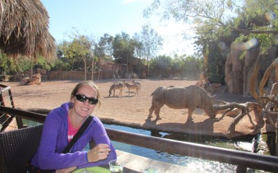 Valencia Bio Parc | One of Valencia's Top 5 'Family Travel' Attractions