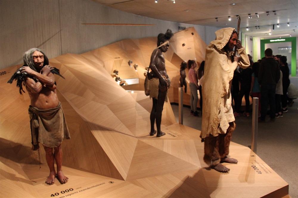Neanderthal Museum Dusseldorf19