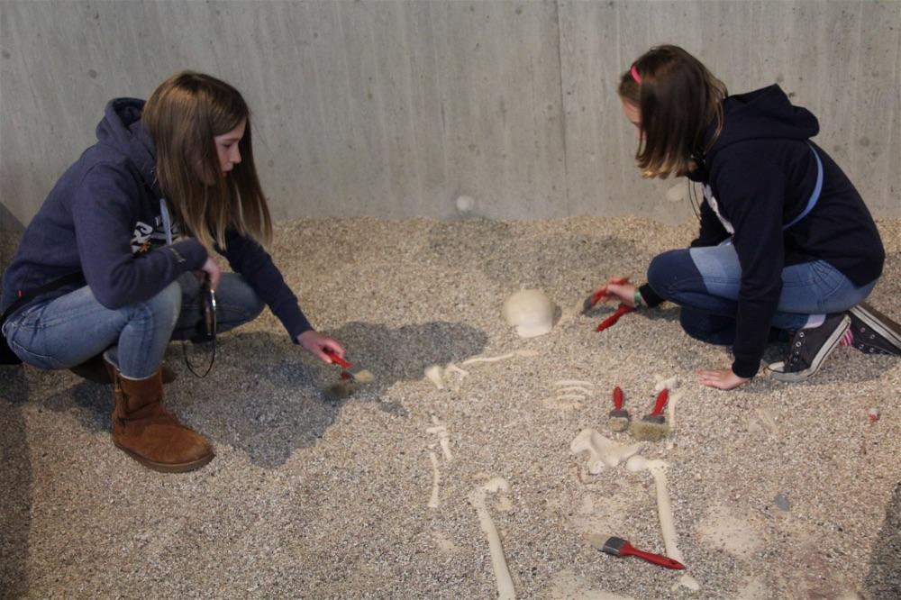 Neanderthal Museum Dusseldorf29
