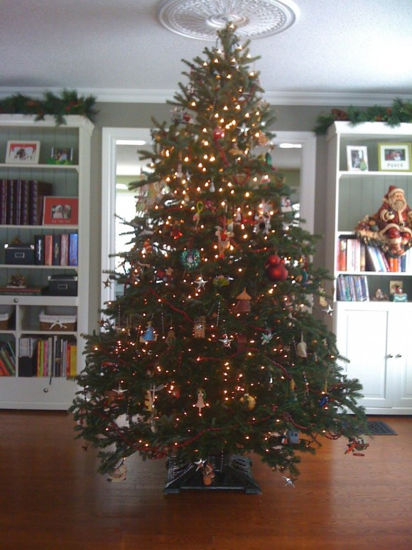 How Early is Too Early for Christmas? - Life In Pleasantville