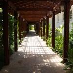 covered walkways Fern Tree