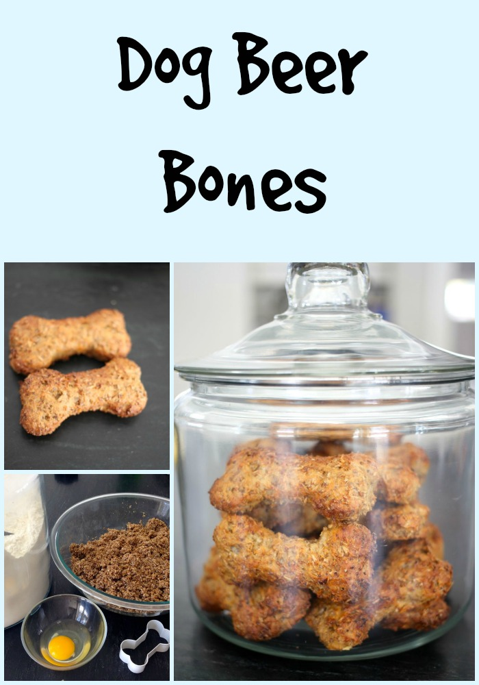 dog beer bones
