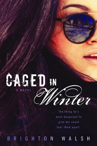 Top Erotic Romance Books, Caged in Winter