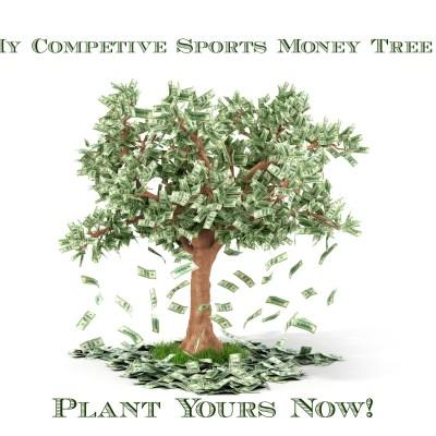 Hey Sports Organizations, Stop Treating Parents Like Money Trees