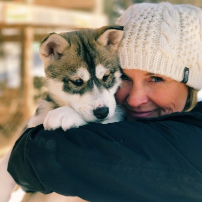 Dogsledding in Mont Tremblant with Expedition Wolf
