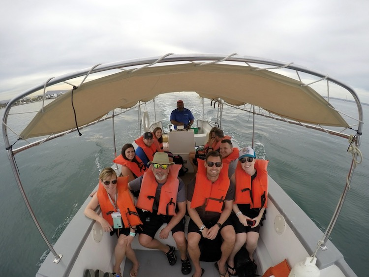 Best Adventure Tours in Cabo, Whale shark encounters