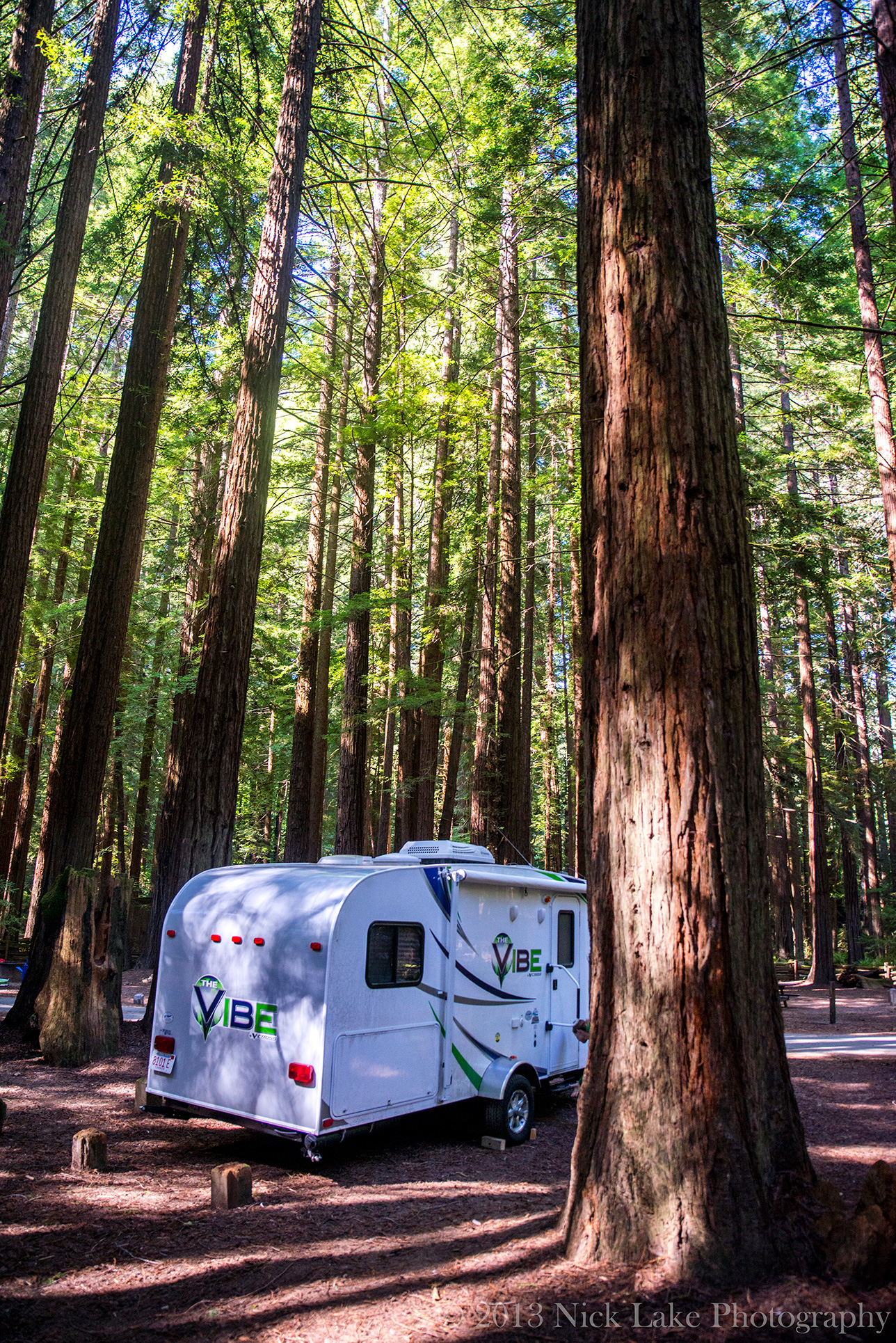 The Vibe rest beneath some of Humboldt Redwoods State Park's trees