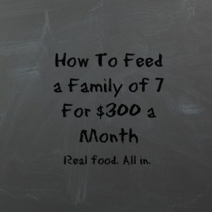 How I Feed a Family of Seven for $300 a Month