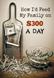 How I'd Feed My Family on $300 a DAY