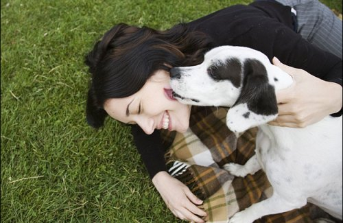 Kissing Your Dog: Yay Or Nay?