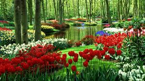 Garden dream meaning