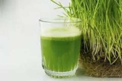 Wheat plant juice