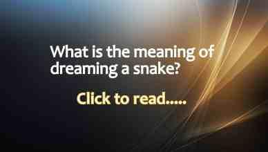 Dreaming snake