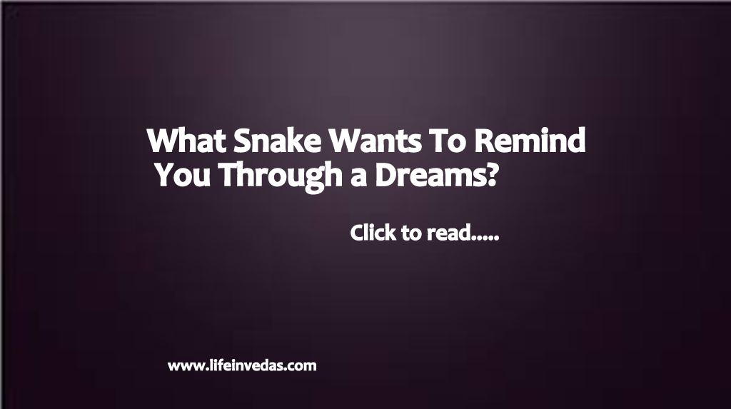 Snake Dream Meaning Gives Alerts & Great Message - Life In Vedas