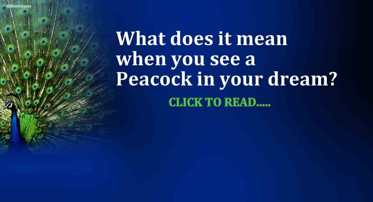 Snake Dream Meaning Gives Alerts Great Message Life In Vedas