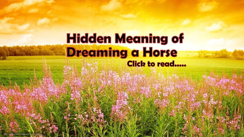 21+ Horse Symbol Dream Meaning of White, Black, Brown Color