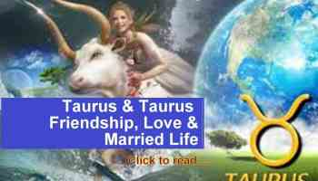 Taurus and Capricorn Compatibility, Love and Relationship