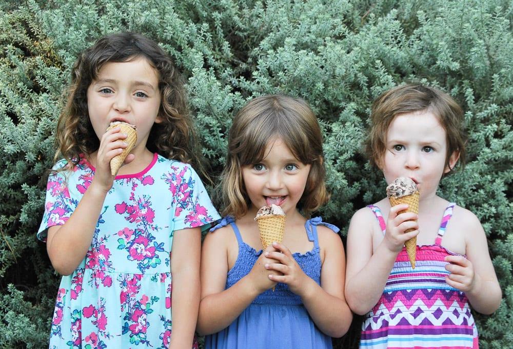 Brownie-chunk-mint-chip-ice-cream-10